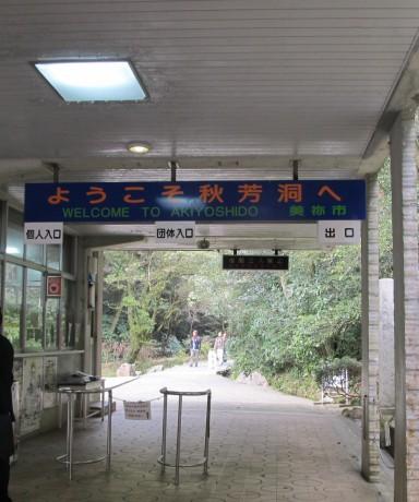 秋芳_16